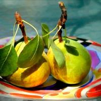 Pears Pair