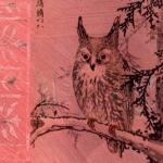 Asian Owl