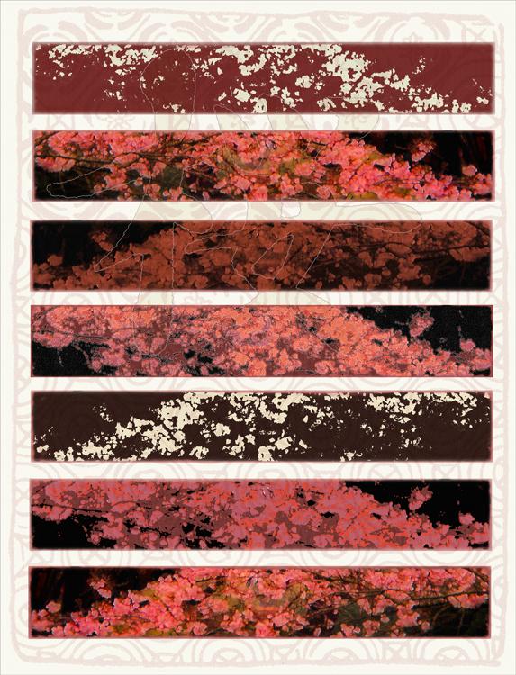 The Seven Sakura